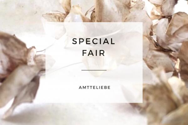 2019.4.27  – Special Fair –